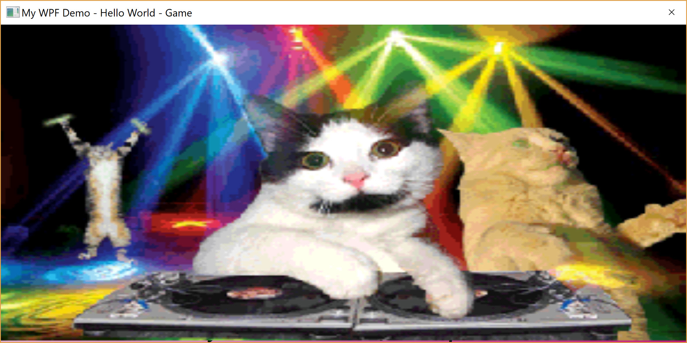 Animated GIF displays of Cats partying